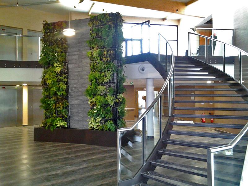 Murs v g taux doyo for Mur vegetal fausse plante