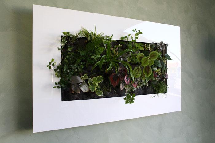 Tableau végétal finition laqué blanc avec arrosage automatique b641dc7f9e0