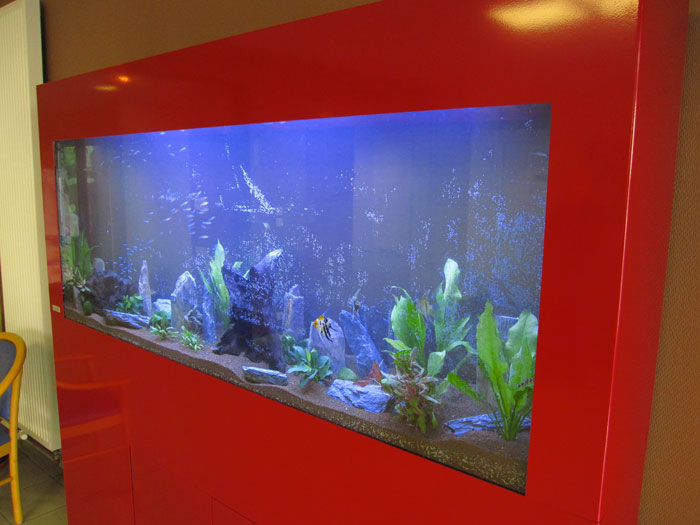 Aquariums doyo for Carpe koi aquarium 300 litres