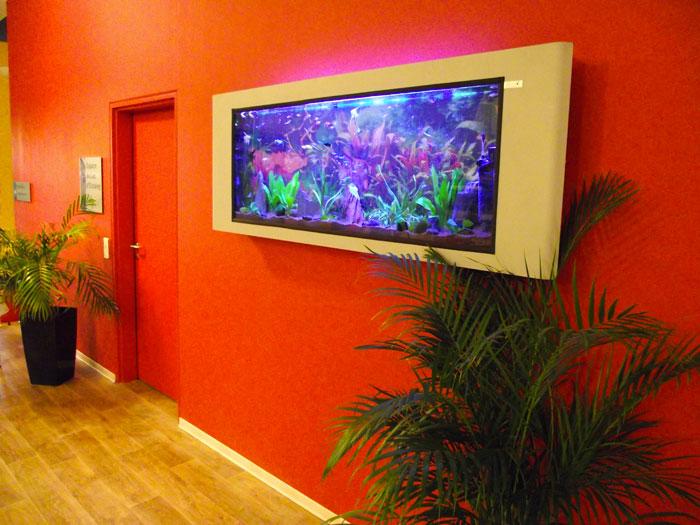 Aquarium mural suspendu clairage de la cuisine for Bocal mural poisson
